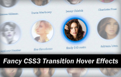 Fancy CSS3 Transition Hover Effects